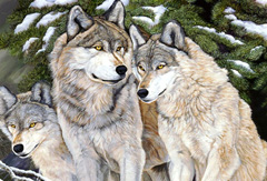Caring-wolf family