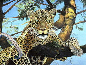 Daytime Hangout-leopard, fine art print on canvas, with Rhodium Cuff Bracelet