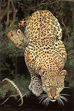 Caution! Baby on Board- Leopard, fine art print,  with CZ and Gold Tennis Bracelet