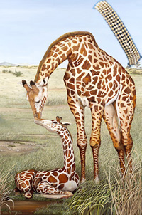 Mother's Touch-giraffes, art print, with 5 Strand Gold Bead Bracelet