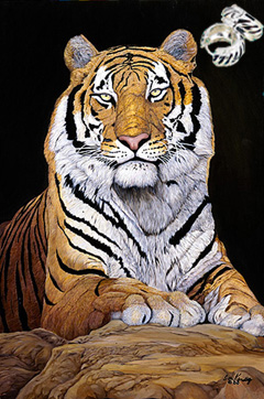 Watchful-Tiger Fine Art Print on Canvas with  the Sterling Silver Huggie Earrings with Black Enamel Inlay and Cubic Zirconia Accents