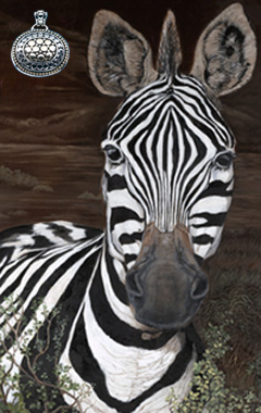 Up close, Personal-Zebra, fine art print, with Gold and Silver Pendant